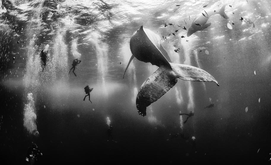 Las 10 mejores fotos de viajes según la revista NationalGeographic