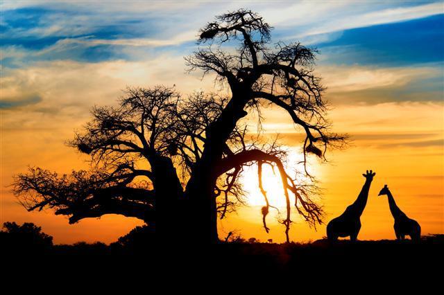 Lugares turísticos deÁfrica