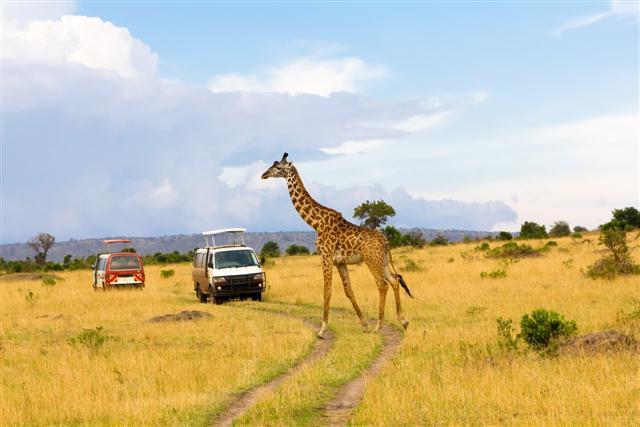 Lugares-turisticos-de-Africa-1