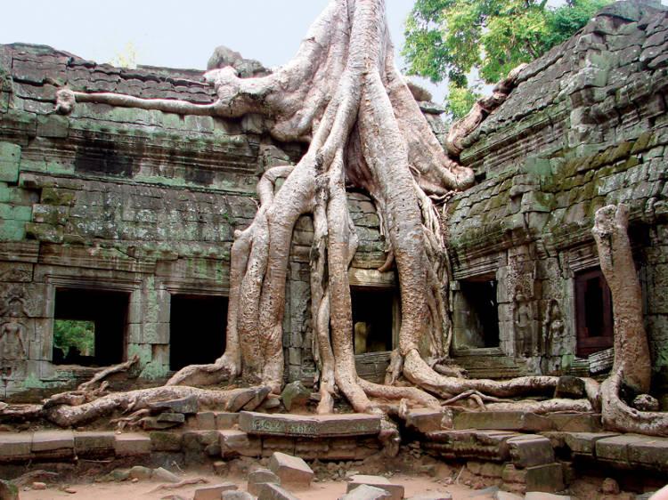 Camboya03