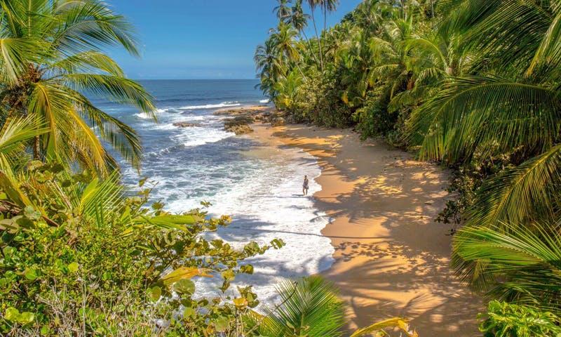 Costa_Rica_Guide0002